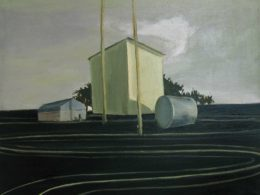 The Field, 2012, 70x90 cm, oil on canvas*