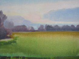 Pole, 2014, 45x50 cm, olej na plátně