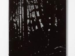 Noc v lese, 2019, tepaný smalt, 50 x 58 cm,  (foto. Marcel Rozhoň)